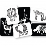safari-cards-web