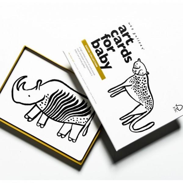 safari-topview-web